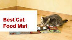 Best Cat Scat Mat Best Cat Food, Indoor Pets, Wire Weaving, Cool Cats, Your Pet, Dog Cat, Top, Animals, Animales