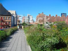 High Line in NYC royalty-free stock photo