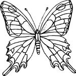 Monarch butterfly Coloring Page Monarch butterfly Coloring Page. Monarch butterfly Coloring Page. Coloring Pages Monarch butterfly Coloring Pages Pantone in butterfly coloring page Coloring Pages Monarch Butterfly Coloring Pages Pantone Butterfly Coloring Page, Butterfly Drawing, Flower Coloring Pages, Mandala Coloring Pages, Coloring Pages To Print, Free Printable Coloring Pages, Coloring Book Pages, Butterfly Wings, Coloring Pages For Kids