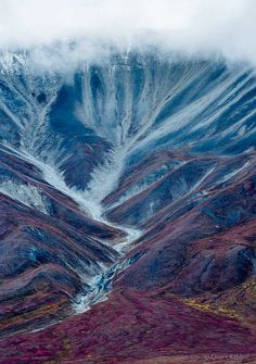 Denali National Park, Alaska. (Color inspiration).