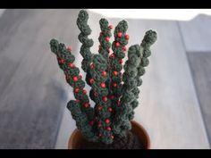 CACTUS DE CROCHET CON BOLITAS DE MADERA - YouTube Crochet Flower Patterns, Crochet Flowers, Crochet Crafts, Crochet Doilies, Cactus Y Suculentas, Cactus Plants, Crafts For Kids, Knitting, Handmade