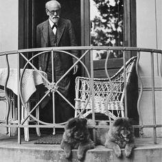 """Sigmund Freud with Fo and Tattoun, 1933"""