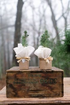 tree sapling favors, minted cabin dinner  love this for an outdoor or barn wedding