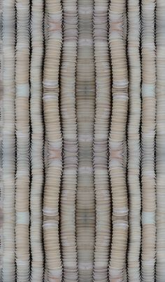 poterie fabric by sockeye on Spoonflower - custom fabric