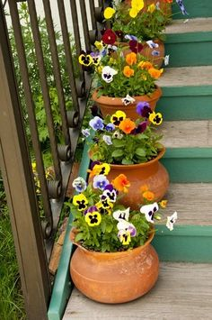 Pots of Pansies on Painted Steps...Pretty! - didn't know whether to pin this to gardens or poetry!