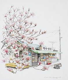 (Korea) A small store, a old mini store with magnolia by Lee Me Kyeoung ). with a pen use the acrylic ink on paper. Korean Art, Asian Art, Watercolor Illustration, Watercolor Paintings, Art Sketches, Art Drawings, Building Art, Urban Sketching, Illustrations And Posters
