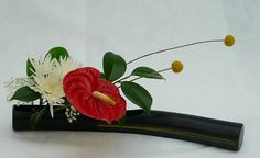 ikebana flower arrangements