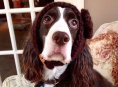 Ellie Beth, ready for a winter walk.