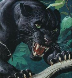 Tranquilo gato, ya disolvieron el congreso Quiet cat, the congress is already dissolved Black Panther Tattoo, Black Panther Art, Big Cats Art, Cat Art, Quiet Cat, Panther Pictures, Angry Animals, Tiger Art, Lion Art
