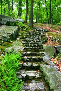 1950s Staircase at Manitoga: Stones, moss, boulders and ferns typical of Manitoga's 75-acre woodland garden. Credit: Tara Wing, Photographer/Courtesy of Manitoga/The Russel Wright Design Center