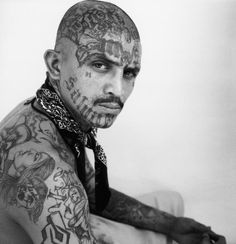 l.a gangs - Google Search