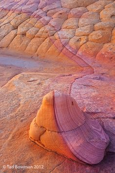 Sandstone Magic. Northern Arizona. Photo by Tad Bowman.