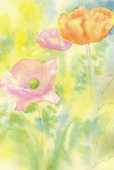 Learn to Paint Bright and Colourful Watercolour Poppies | Features | Painters Online