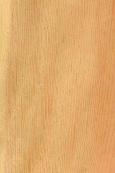 Kiefer | Furnier: Holzart, Kiefer, rot, rötlich, Nadelholz, Blatt, hell, #Holzarten #Furniere #Holz