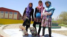 Young street girls in Afghanistan are empowering themselves through an unexpected sport: skateboarding.