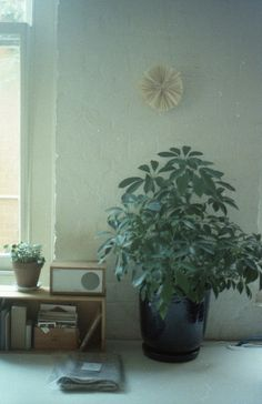 Elizabeth's apartment by schorlemädchen, via Flickr