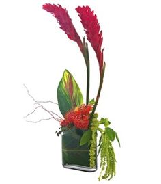 Tres Chic Tropical Flower Arrangement by Cactus Flower #mother's day flowers #tropical flowers
