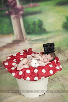 Alice in Wonderland inspired newborn session.  Christy Whitehead photography. Jacksonville, Florida based wedding, engagement, newborn, maternity and family photographer. Destination weddings.