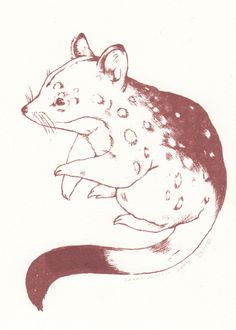 Georgie Love - Quoll Limited Edition Gocco Print by Sarah McNeil AUD $16