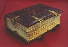 Fig. 96 Binding with metal loops for suspending the book, early sixteenth century. Tilburg, Universiteitsbibliotheek, Ms. 11 (formerly TFK 10). Image © Tilburg Universiteitsbibliotheek, CC BY 4.0. Image 2 of 72 Retrieved by the web. Copyright by Tilburg Universiteitsbibliotheek