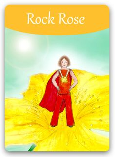 "Bach Flower Cards [Rock Rose] - For people in a state of frozen fear that has been aptly described as a ""punch in the stomach,"" and that is an apt description, because the solar plexus is at the center of the nervous system, which has suddenly been rendered unable to cope. This essence helps build courage and alleviate terror. Treatment allows a state of calm and reason to return, while the fear subsides."