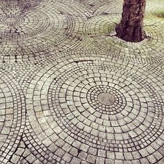 Stone Walkway around the few decorative trees...perfect for mowing (single circle) and don't have to weed...plus flowers would detract from the trees!
