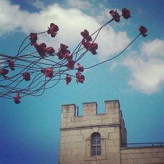 Tower of London poppy memorial