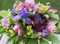Bind en fin sommarbukett och ge bort när du blir bortbjuden. Till vänster: Trädgårdslewisia och daggkåpa är de enda blommorna i denna bukett. För att ge en liten och nätt känsla är den kompakt bunden. Till höger: en stor, fylld papegojtulpan fick bli blickfånge i denna bukett, som är byggd utifrån den. Ge Bort, Floral Wreath, Bouquet, Wreaths, Home Decor, Flower Crowns, Door Wreaths, Bouquet Of Flowers, Bouquets