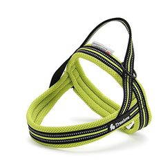 Pettom Pet Nopull Harness 3m Reflective Security Soft Mesh Padded Dog Harness Green XL ** Want to know more, click on the image.