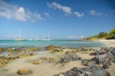 Boca Catalina, Aruba