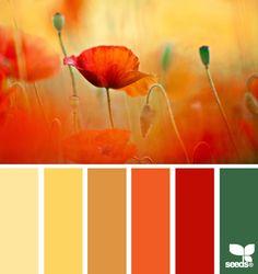 """color field - Très agréable à """"feuilleter"""". - Pour votre site web, blog, ou votre intérieur, inspirez-vous des palettes de couleur proposés, ou réalisez vous-même une harmonie autour d'une couleur grâce l'outil """"RGB"""". http://design-seeds.com/index.php/search"""
