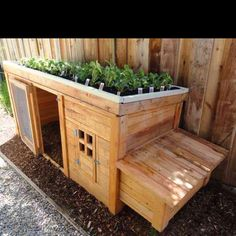 I want this for our chickens this spring :))
