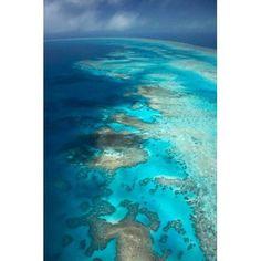 Arlington Reef Great Barrier Reef Marine Park North Queensland Australia Canvas Art - David Wall DanitaDelimont (18 x 26)