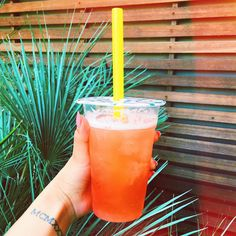 "114 mil curtidas, 3,710 comentários - Lauren Riihimaki (@laurdiy) no Instagram: ""boba makes me feel like summer ☀️ when do you get out of school for the summ? """