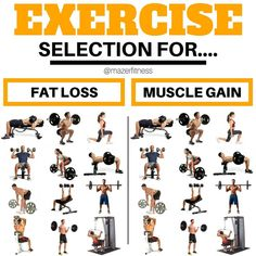 "1,606 Likes, 18 Comments - Dennis | Online Fitness Coach (@mazerfitness) on Instagram: ""EXERCISE SELECTION FOR MUSCLE GAIN AND FAT LOSS!!! - See the difference? No me neither… -…"""