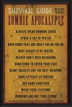 The Artwork Factory Zombie Apocalypse Survival Guide Framed Textual Art …