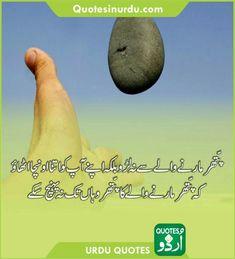 Urdu Quotes, Movies, Movie Posters, Films, Film Poster, Cinema, Movie, Film, Movie Quotes