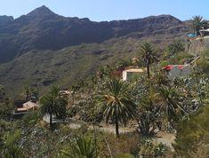 Masca on upea luonnonkaunis laakso komeiden vuorten keskellä Teneriffalla. Laaksoon vievät kapeat serpentiinitiet ovat ainoa reitti nähdä tämä saaren helmi. Lue lisää blogista! // www.kookospalmunalla.fi // Masca is a wonderful naturally beautiful valley in the middle of massive mountains in Tenerife. The narrow serpentine roads are the only way to reach the valley and the most beautiful spot on the island. More on blog! // #masca #tenerife #teneriffa #kookospalmunallablog #matkablogi Naturally Beautiful, Most Beautiful, Canary Islands, Safari, Middle, Mountains, Nature, Travel, Santiago