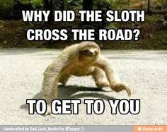 Creepy sloth...so scary...
