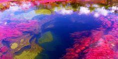 imagens da natureza mais lindas do mundo - Pesquisa do Google