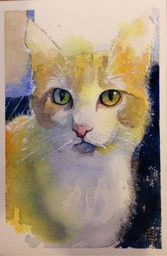 """Watercolor of my hairstylist's cat... """"Shannon's Cat"""""""