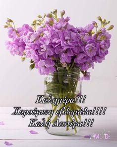 Funny Images, Glass Vase, Decor, Humorous Pictures, Decoration, Funny Pics, Imagenes De Risa, Funniest Pictures, Decorating