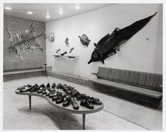 Bata Shoe Store in Amsterdam, Netherlands, 1953