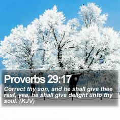 Proverbs 29:17 Correct thy son, and he shall give thee rest, yea, he shall give delight unto thy soul. (KJV)  #Grace #Disciple #Discipleship #Theology #PraiseJesus #WordOfGod http://www.bible-sms.com/