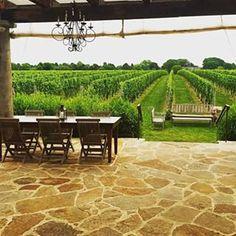 vinicola,viagem, travel, trip, luxury travel,experience