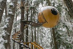 Tiny Houses, Tree Houses  Fun and Funky designs...