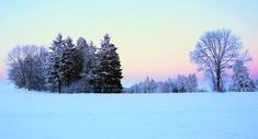 Image result for snowy landscape