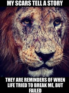 Lion quotes - So My last dump went viral, ppl said moar and thnx so i hope you find something good in here for your needs Motivacional Quotes, Lion Quotes, Wolf Quotes, Motivational Quotes For Life, Inspiring Quotes About Life, Quotable Quotes, Meaningful Quotes, Wisdom Quotes, True Quotes