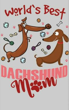 Dachshund....I use to be but my babies are now in heaven...mpp