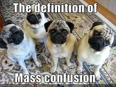 The definition of mass confusion or???